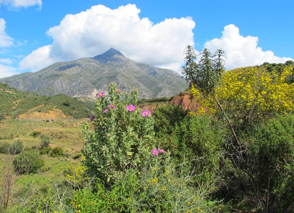 La Concha - the local mountain of Marbella - view from Istan