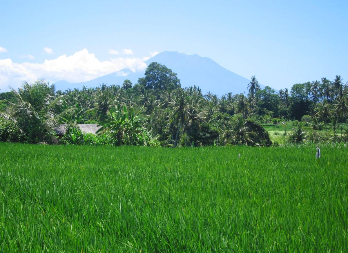 view to Gunung Agung (sacred mountain of Bali - volcano)
